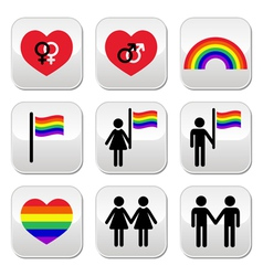 Gay and lesbian couples rainbow buttons se vector image vector image