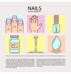 Set of color line icons on the theme of nails vector image vector image