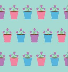 bellflower flower set in pot seamless pattern vector image