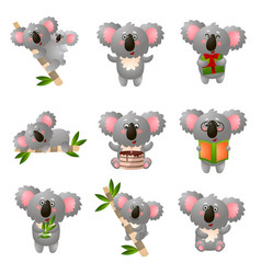 cartoon koala set in different pose isolated on vector image