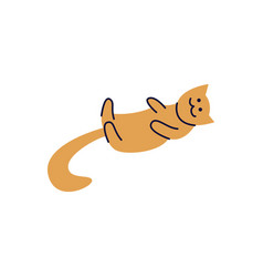 cat or kitten lays on his back line vector image