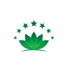 lotus leaf star logo image vector image