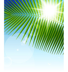 palm leaf1 vector image