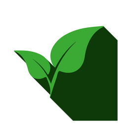 plant with long shadow vector image