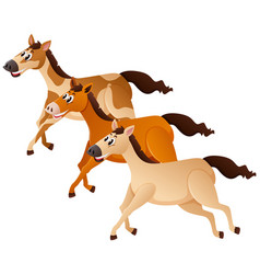Three horses running in group vector