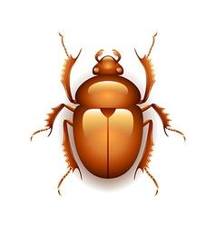 Egyptian scarab beetle isolated on white vector image