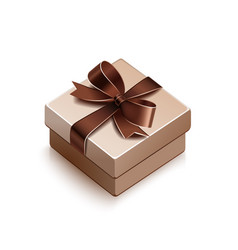 gift with brown bow vector image