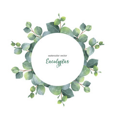 watercolor wreath with silver dollar vector image