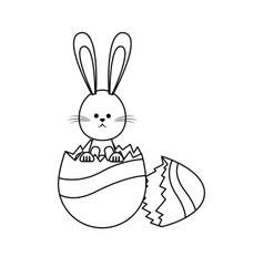 Cute easter bunny egg broken decoration vector