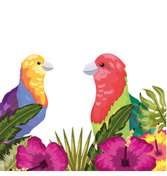 exotic and tropicas vector image