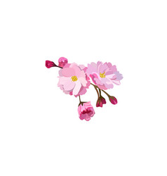 Red cherry flower vector