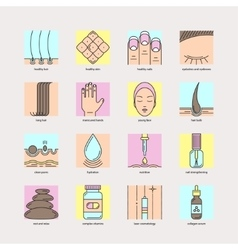 Set of color line icons of hair skin and nails vector image