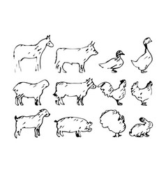 set of farm animal sketch hand vector image