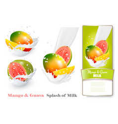 mango and guava in milk splashes vector image vector image