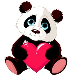 valentine panda vector image vector image