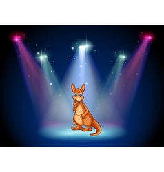 A stage with a kangaroo vector image