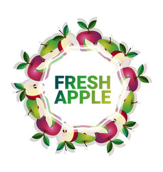 apple fruit colorful circle copy space organic vector image