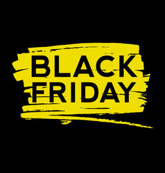 black friday text on the paint splash vector image
