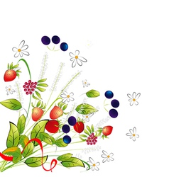 bunch from flowers and berries vector image