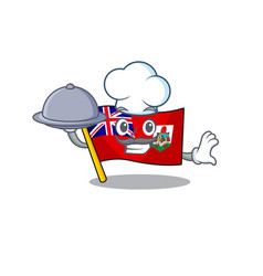 Flag bermuda isolated cartoon chef holding food vector