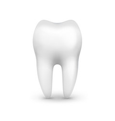 single white tooth vector image