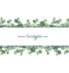 watercolor green floral banner with silver vector image vector image