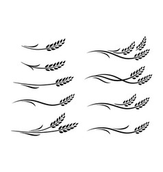 hand drawn doodle black wheat ears set vector image