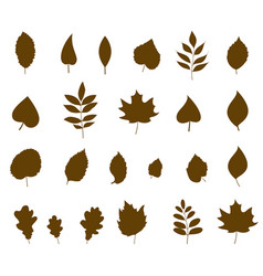 leaves icon different shapes in modern flat style vector image