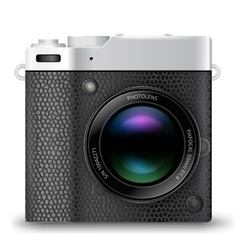 MRLS camera icon vector image