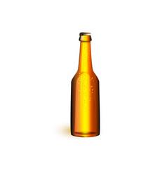 Realistic beer glass bottle mochup vector