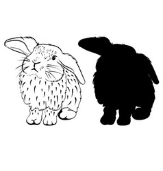 stylized sketch of a bunny vector image