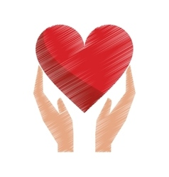 drawing hands holds heart love care vector image