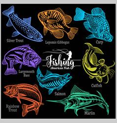 American fish - set for creative design t vector