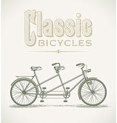 Classic tandem bicycle vector image