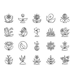 Garden charcoal draw line icons set vector