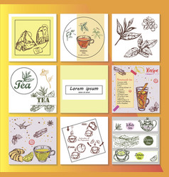 hand drawn tea time composition vector image