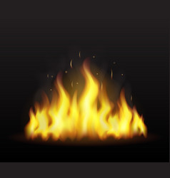 realistic fire on a transparent background vector image