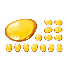 set of honey drops on white background vector image