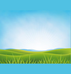 Summer or spring meadows background vector