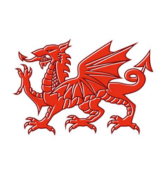 welsh red dragon on white background vector image