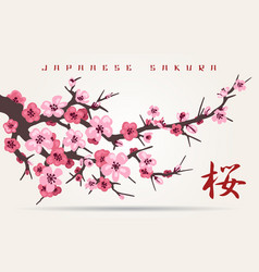 japan cherry blossom tree branch vector image