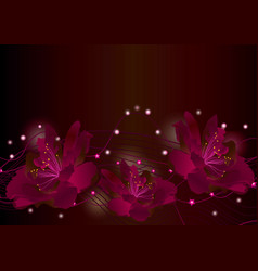 red flowers on dark background glowing border vector image vector image