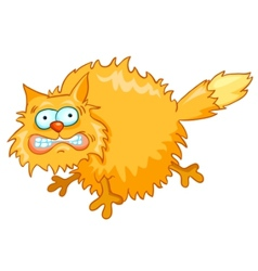 Cartoon character cat vector
