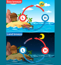 Diagram showing sea and land breeze vector