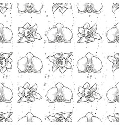 Hand drawn orchid seamless pattern vector