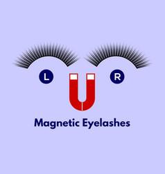 magnetic eyelashes vector image
