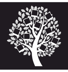 Family genealogical tree on black background vector image