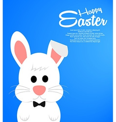 Easter background with cute white bunny vector image vector image