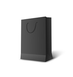 blank paper gift package or bag mockup 3d vector image