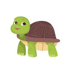 cute little turtle stands on four paws looking up vector image
